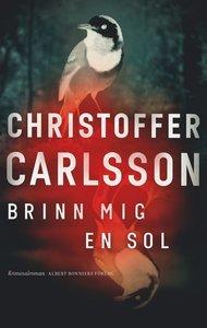 Christoffer Carlssons 3 bästa böcker