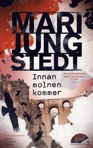 Mari Jungstedts 3 bästa böcker du måste läsa