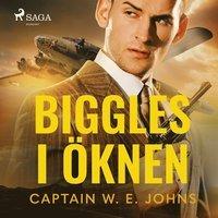 Biggles-boken på svenska du måste läsa: Biggles i öknen (2008)