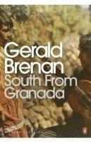 7 bästa böckerna att läsa innan du besöker Granada och Sierra Nevada