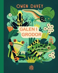 4 böcker om grodor för ditt barn