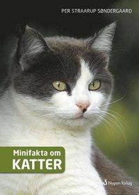 3 barnböcker om katter du måste spana in