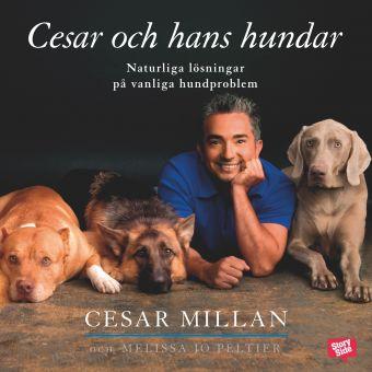 3 böcker om hundar du måste läsa